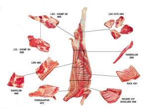 goat_meat_cuts