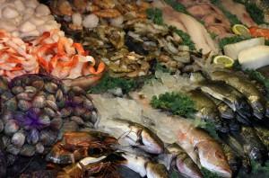 seafood (2)