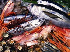seafoodsend
